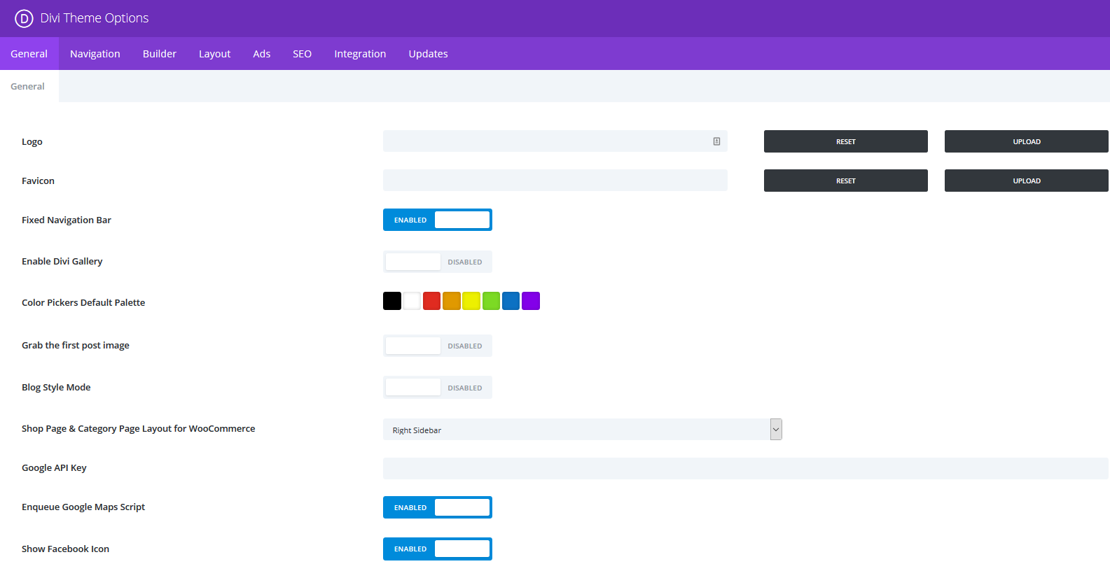 The Divi Theme Settings